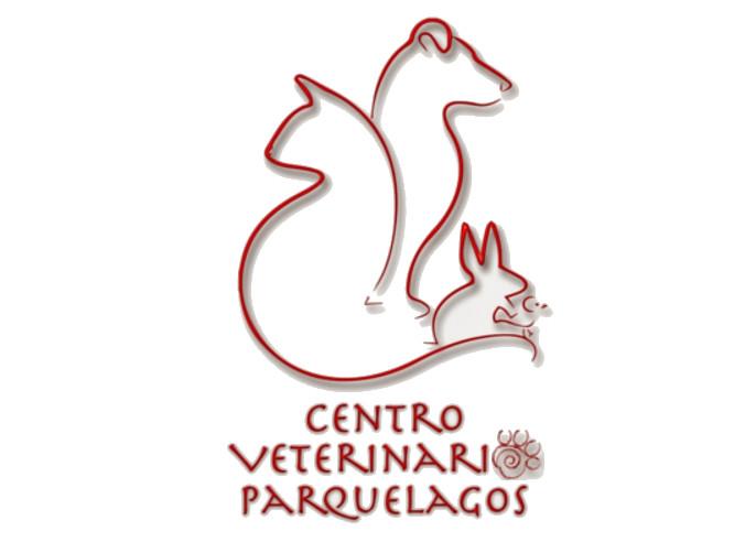Centro VP (4)